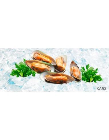 Mejillon Verdes cocidos 1/2 concha