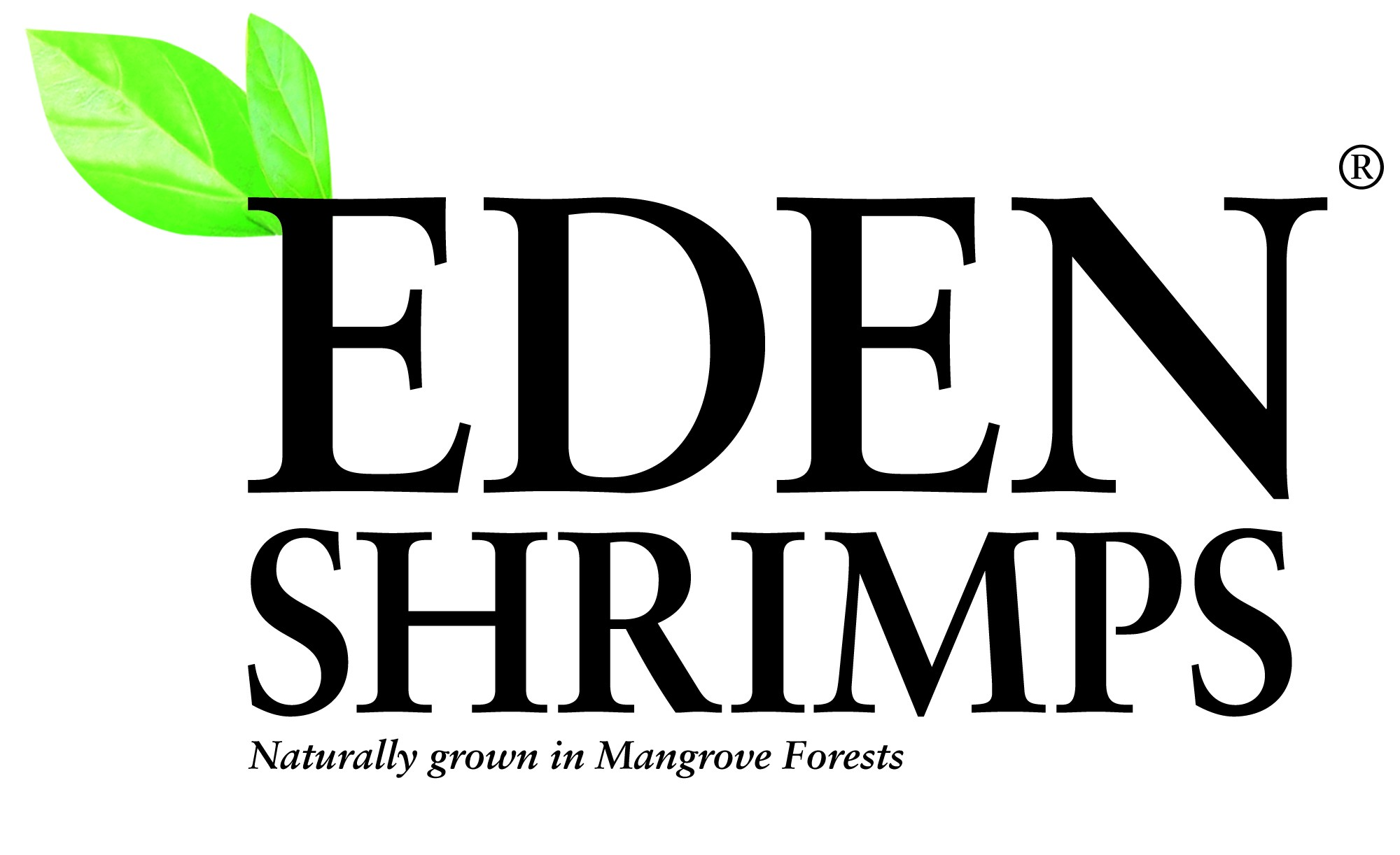Eden Shrimps